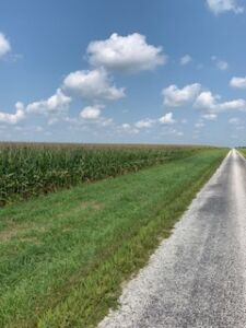 40 Acres Prime Champaign County Farmland