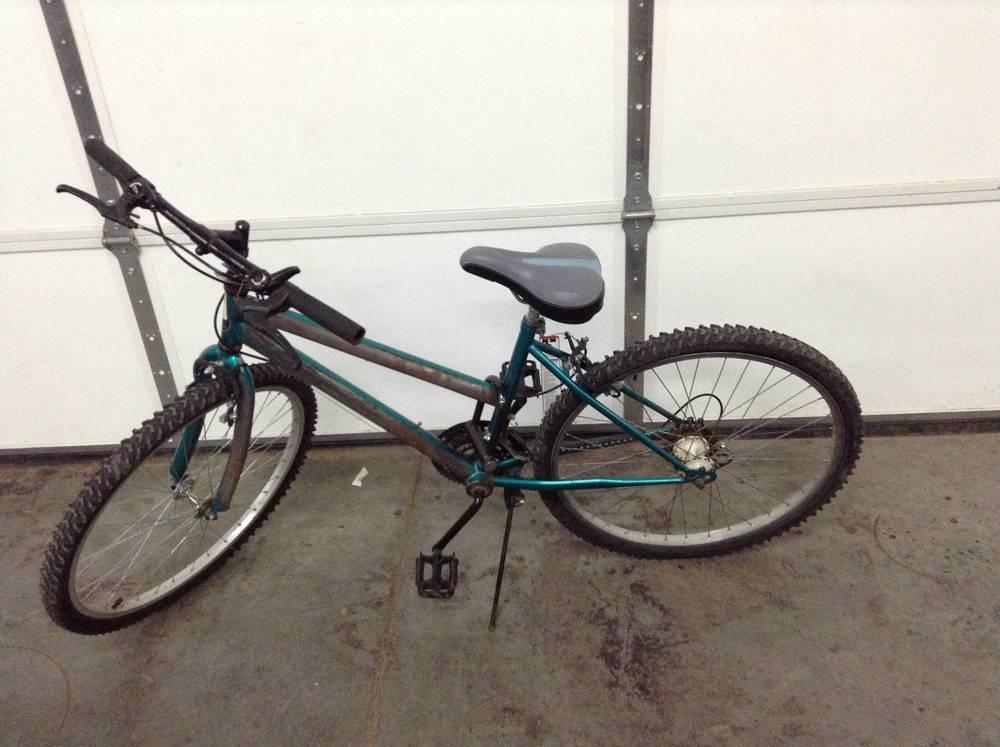 Roadmaster 15 Speed Bike Current Price 1